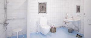 toilette-pmr